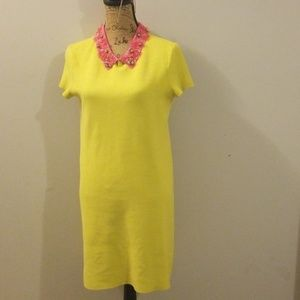 Kate Spade knit dress with THAT collar detail!!!